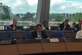 Dr. Petr Válek, Director of the International Law Department, Presented to the Committee of Ministers of the Council of Europe the Reports of the Committee of Legal Advisers on Public International Law